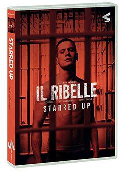 Il ribelle - Starred up (2013) DVD 5 Custom ITA DDN
